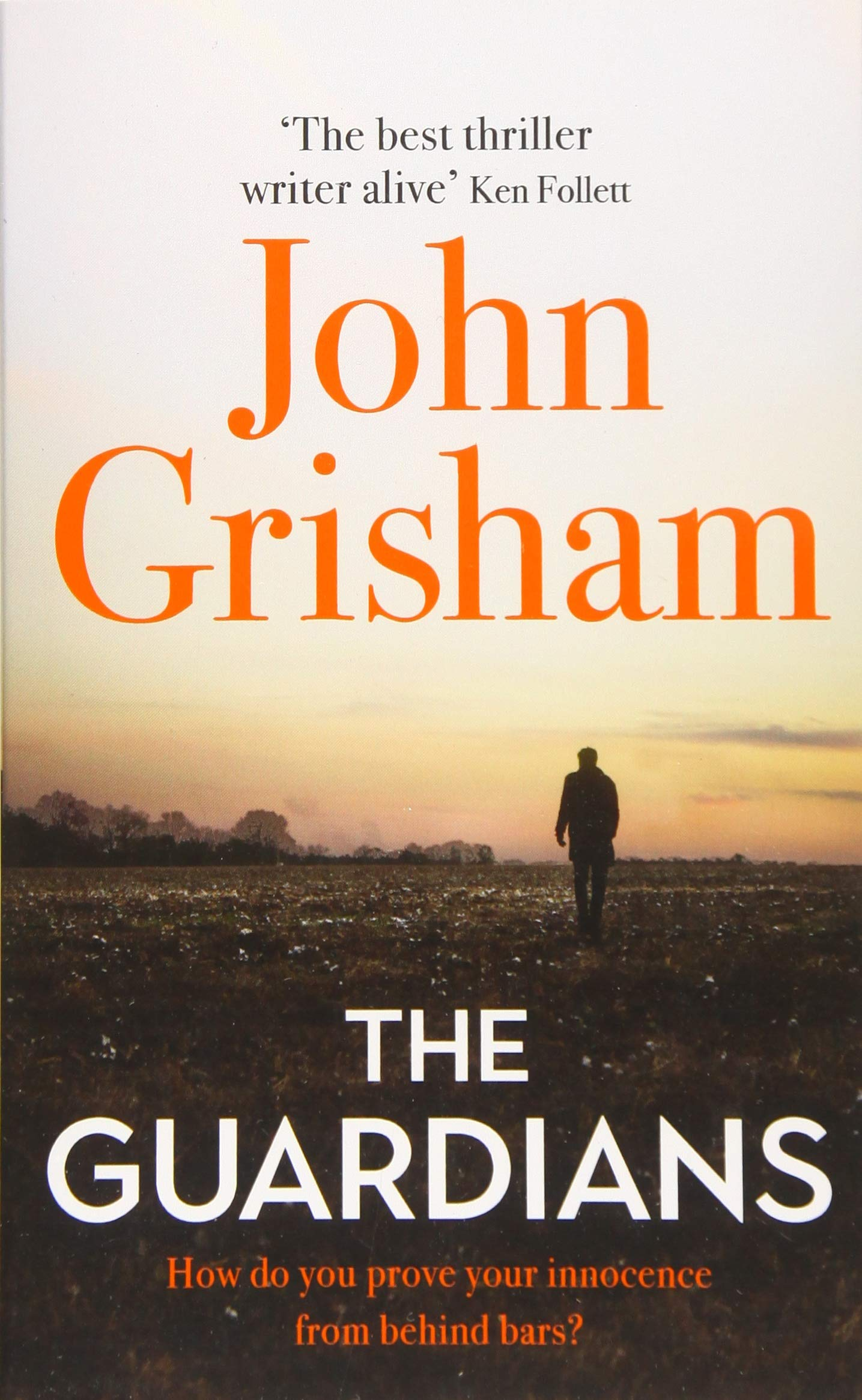 Cover: John Grisham The Guardians