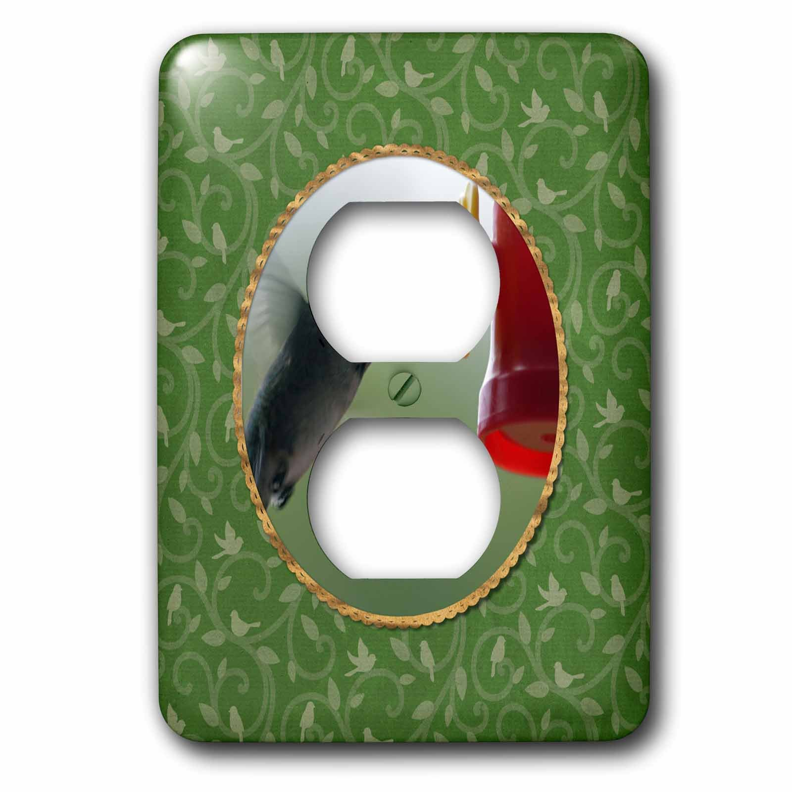 3dRose Beverly Turner Bird Photography - Hummingbird at Feeder in Round, Birds on Branches, Green - Light Switch Covers - 2 plug outlet cover (lsp_274408_6)