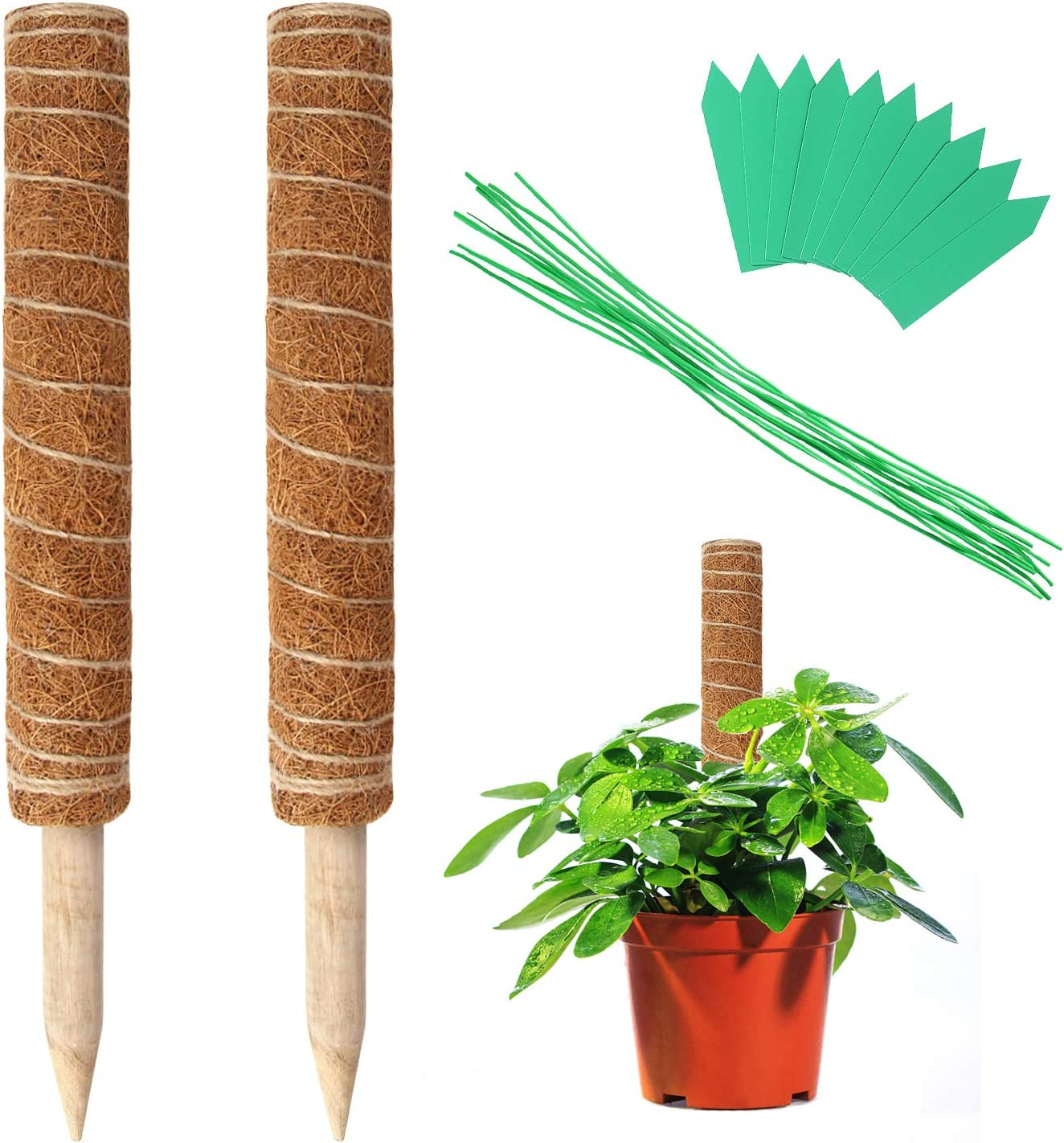 Augshy 2 Pcs 16 Inches Coir Totem Pole Moss Sticks for Indoor Plants Climbing, Plant Totem for Plant Support Extension, Creepers, with 10 Pcs Plant Labels and 10 Pcs Twist Ties