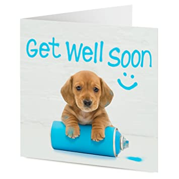 cute puppy dog leaves graffiti get well soon message get well soon