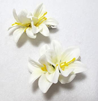 Amazon pair of white flower hair clips set of two beauty pair of white flower hair clips set of two mightylinksfo