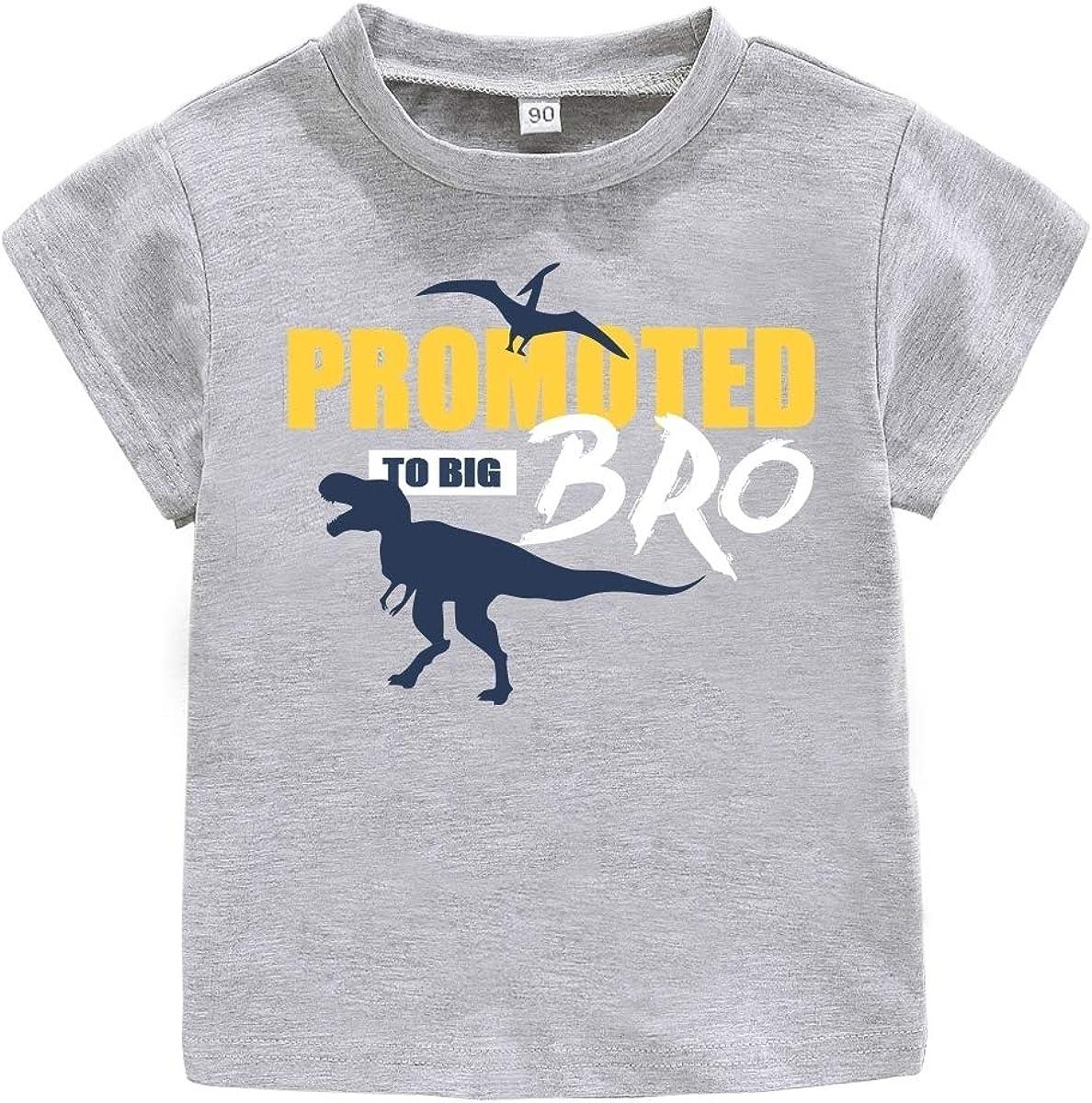 Matching Set Short Sleeve Infant Bodysuit /& Boys T-Shirt Dinosour Little Brother//Big Brother