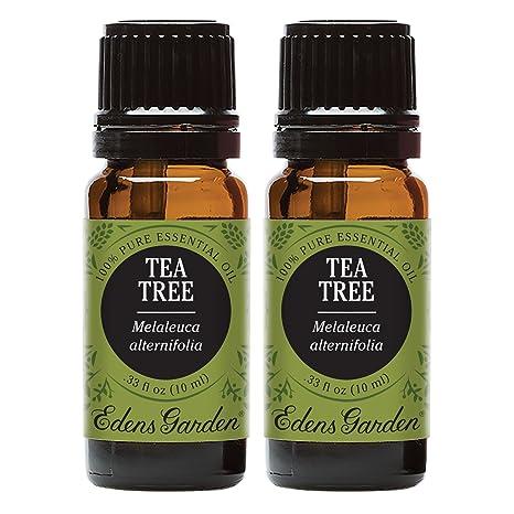 Amazon Com Edens Garden Tea Tree Essential Oil 100 Pure Therapeutic Grade Allergies Inflammation 10 Ml Value Pack Health Personal Care