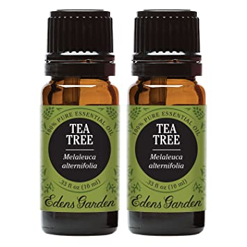 Tea Tree Essential Oil (100% Pure, Undiluted Therapeutic/Best Grade) High