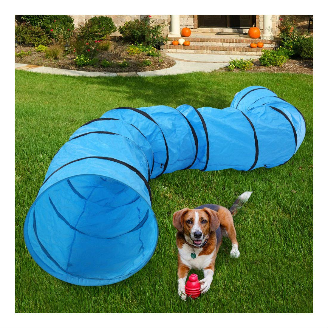16.4' Agility Training Tunnel Pet Dog Play Outdoor Obedience Exercise Equipment by Unknown