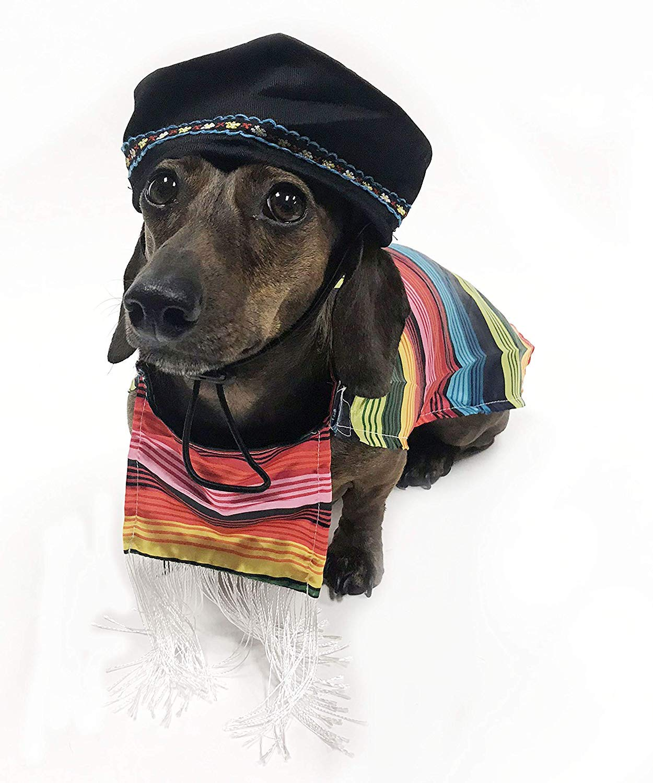 14\ Midlee Mexican Serape Dog Costume (14  Back Length)