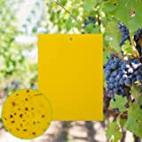Home-Mart 10-Pack Dual-Sided Yellow Sticky Traps for Flying Plant Insect Like Fungus Gnats, Flying Aphid, Whiteflies…