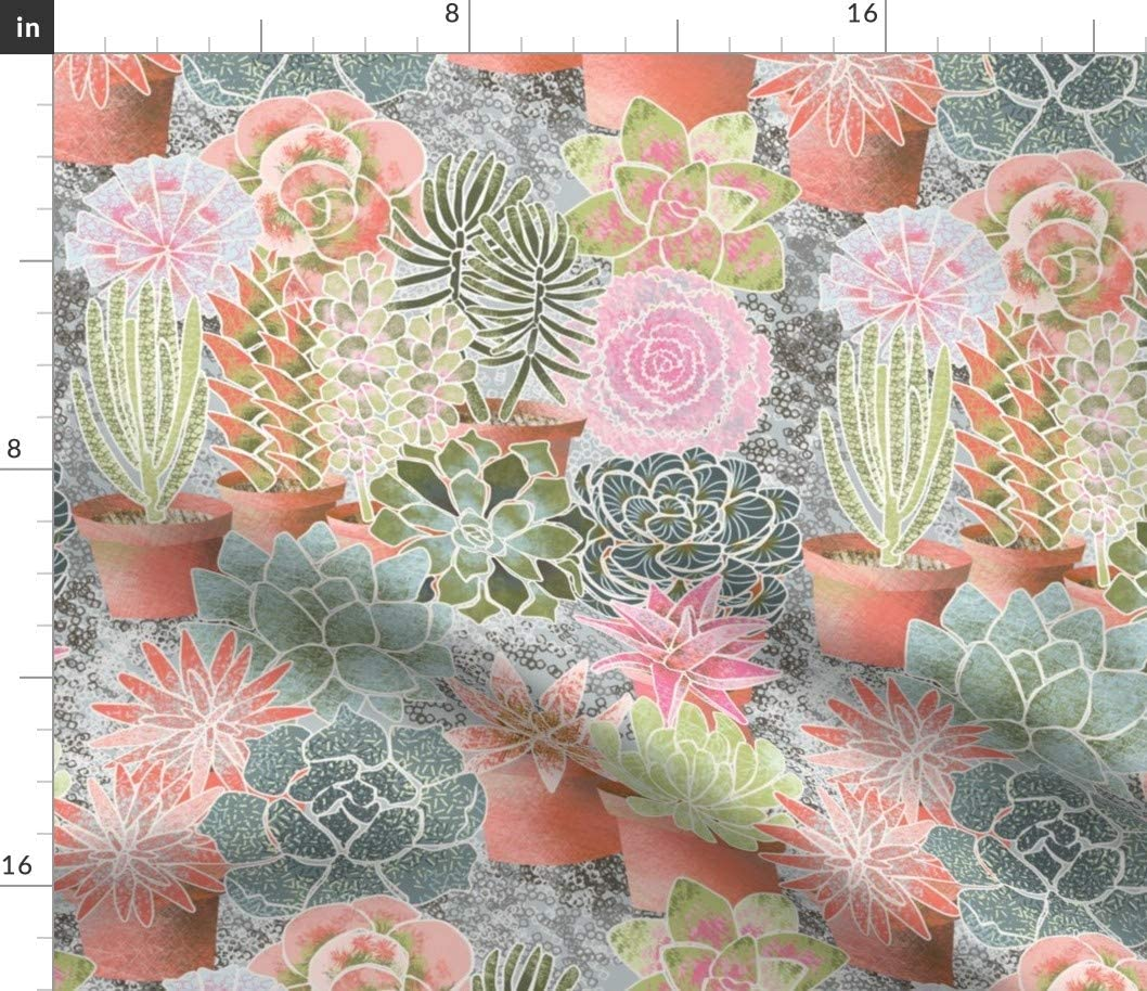 Spoonflower Fabric - De Succulents Succulent Plants Nature Flower Garden Printed on Minky Fabric by The Yard - Sewing Baby Blankets Quilt Backing Plush Toys