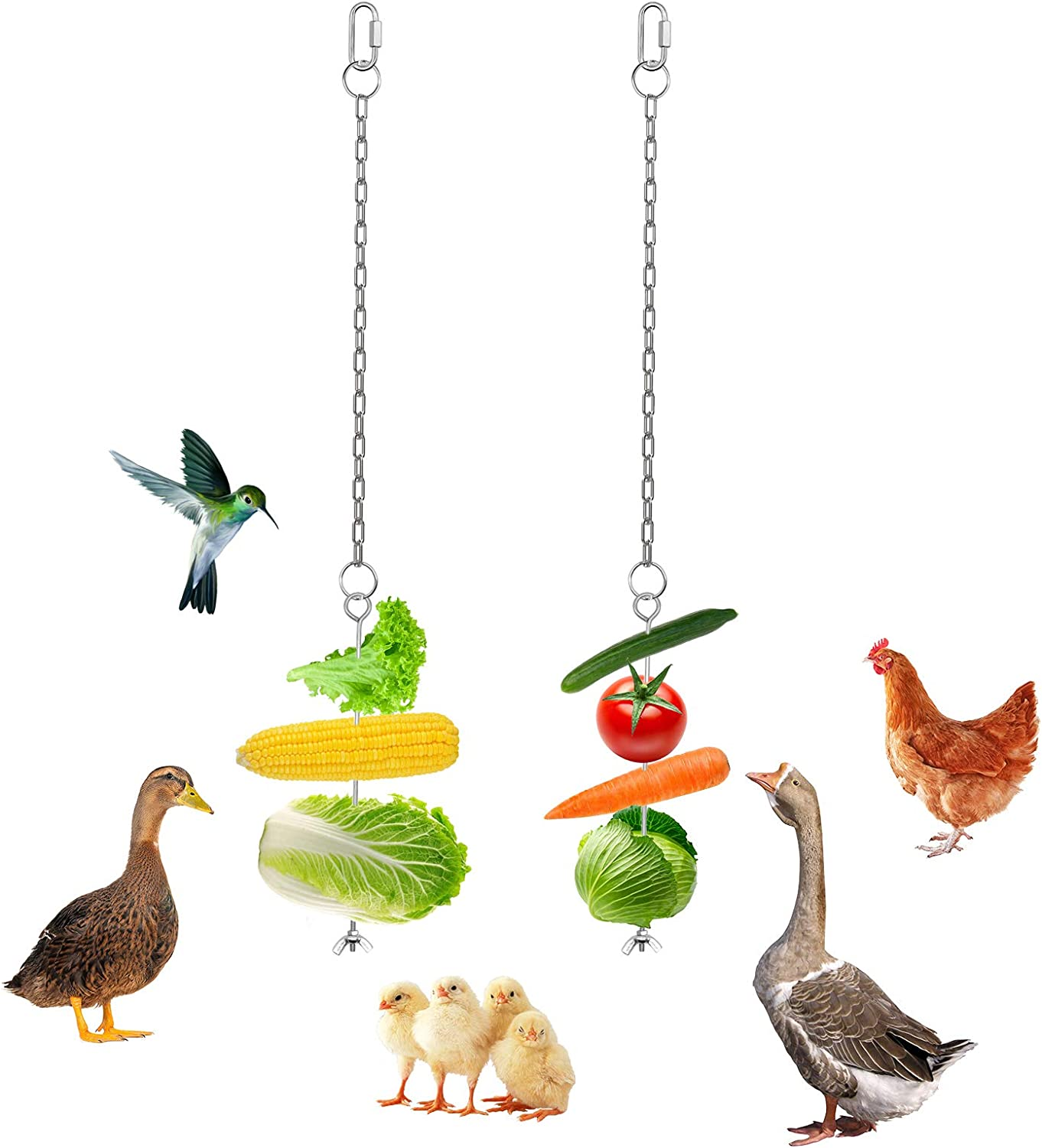 MIMORE 2 Pack Chicken Hanging Food Holder Fruit Vegetable Supporter Stainless Steel Stick Feeder Skewer Veggies with Chain Feeding Tools for Birds Parrots Pet Hens Duck Goose Poultry