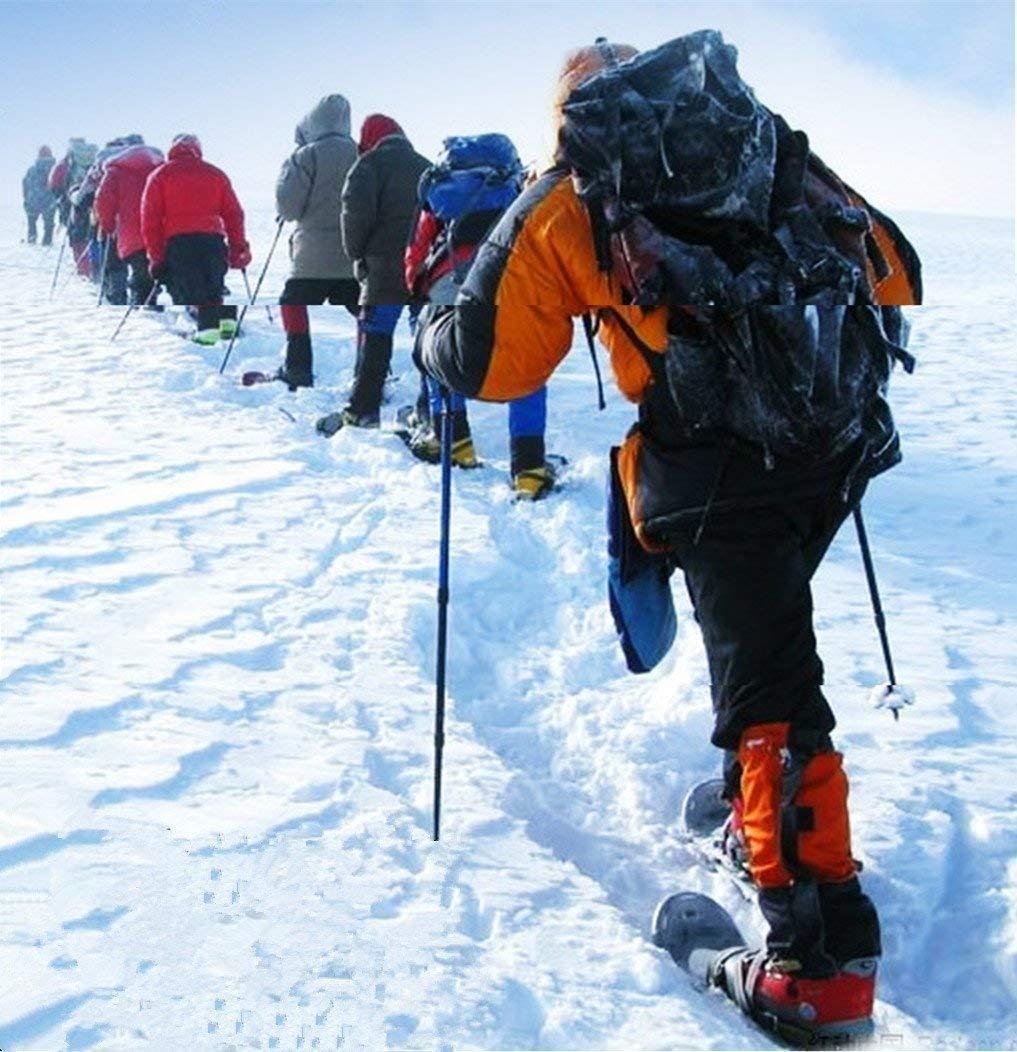 Hiking Trekking Poles Walking Sticks (1 Pair) Telescoping Ultra Strong Alpenstocks Anti Shock Mountaineering Trail--Black