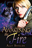 Awakening the Fire (Guardian Witch Book 1)