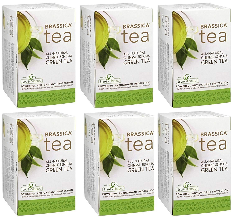 Brassica Tea Sencha Green Tea with truebroc, 16 Tea Bags (6 Pack) by Brassica Tea