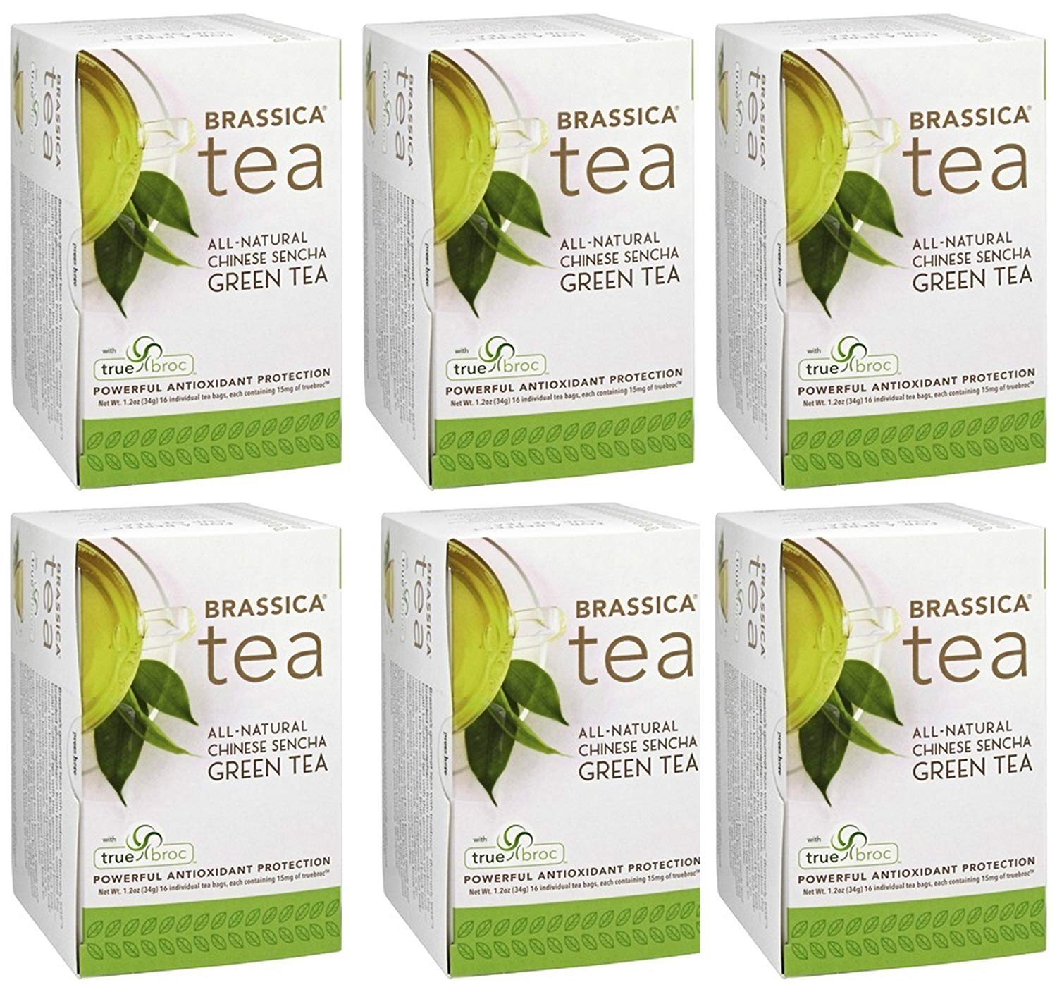 Brassica Tea Sencha Green Tea with truebroc, 16 Tea Bags (6 Pack)