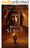 Mage Slave (The Enslaved Chronicles Book 1) (English Edition)