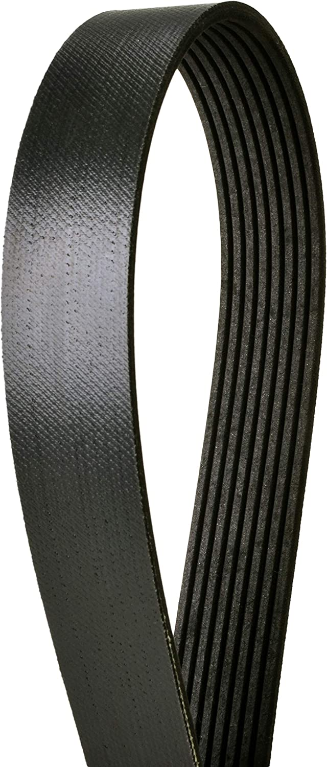Continental 4081190F 8 Ribs 119.00 Multi-V Belt