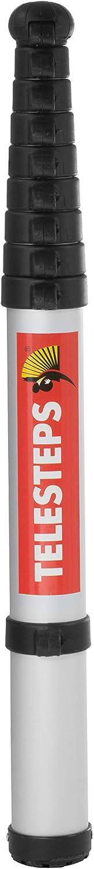 Telesteps 20130-501 Ecoline /Échelle t/élescopique Argent/é et noir 3 m