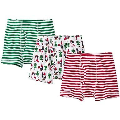db5357f17643 Amazon.com: Hanna Andersson Little Boy Boys Boxer Briefs in Organic ...