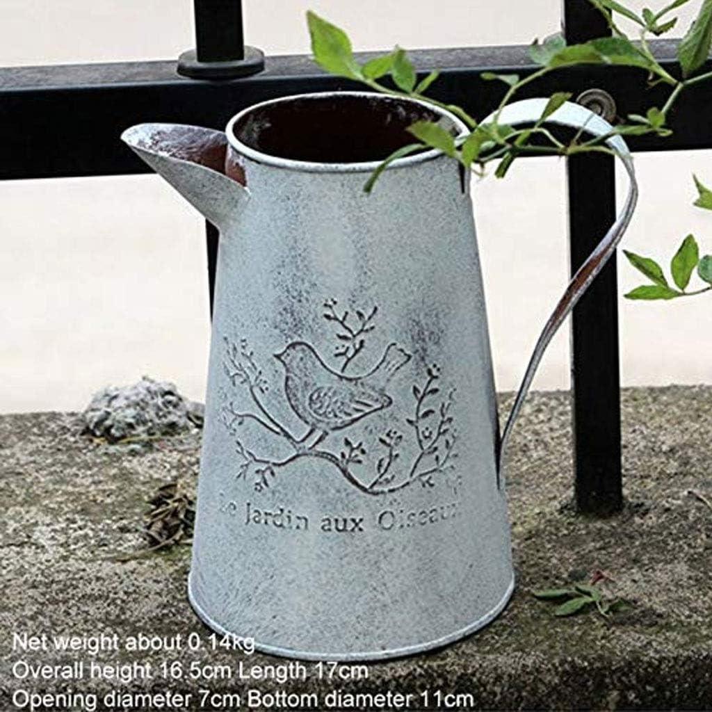 XZ15 Regadera jardín Hierro Forjado regadera Flor regaderas Adornos Retro Viejo Gran Barril de Hierro arreglador de Flores (Forma : A): Amazon.es: Hogar