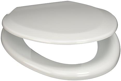 Tremendous Plumbtech 124 04 Premium Molded Wood Elongated Toilet Seat Pabps2019 Chair Design Images Pabps2019Com