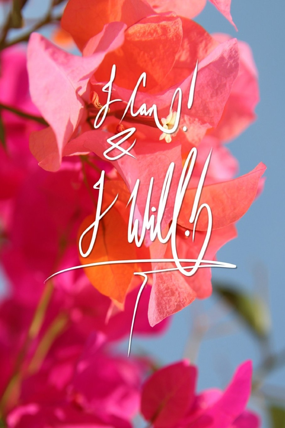 I can and I will: 6x9 Inch Lined A journal designed to remind you that you can, and you will!! - Pink, Flower, Bougainvillea, nature, colorful, Calligraphy Art with photography, GIFT IDEA pdf epub