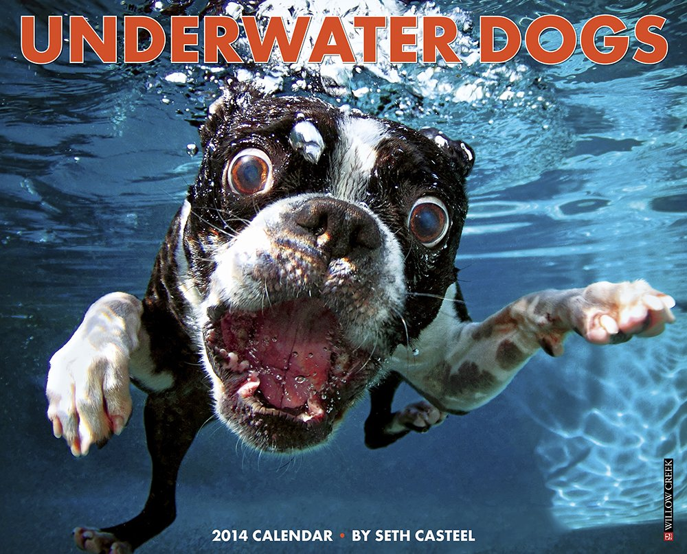 Underwater Dogs 2014 Wall Calendar