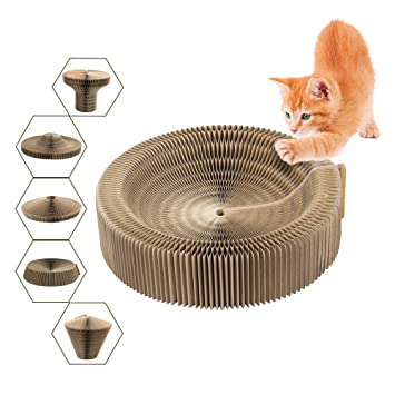 Cama Scratcher gato, plegable cartón Scratcher juguete ronda Scratching salón cama para gatito Kitty Cat: Amazon.es: Productos para mascotas