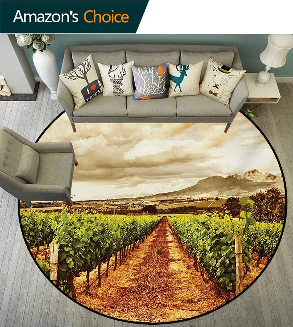 Country Anti-Skid Area Rug,Grape Valley Clouds Over Vineyard Fruit Plantation Digital Print Green Soft Area Rugs,Diameter-39 Inch Burnt Orange Green Off White