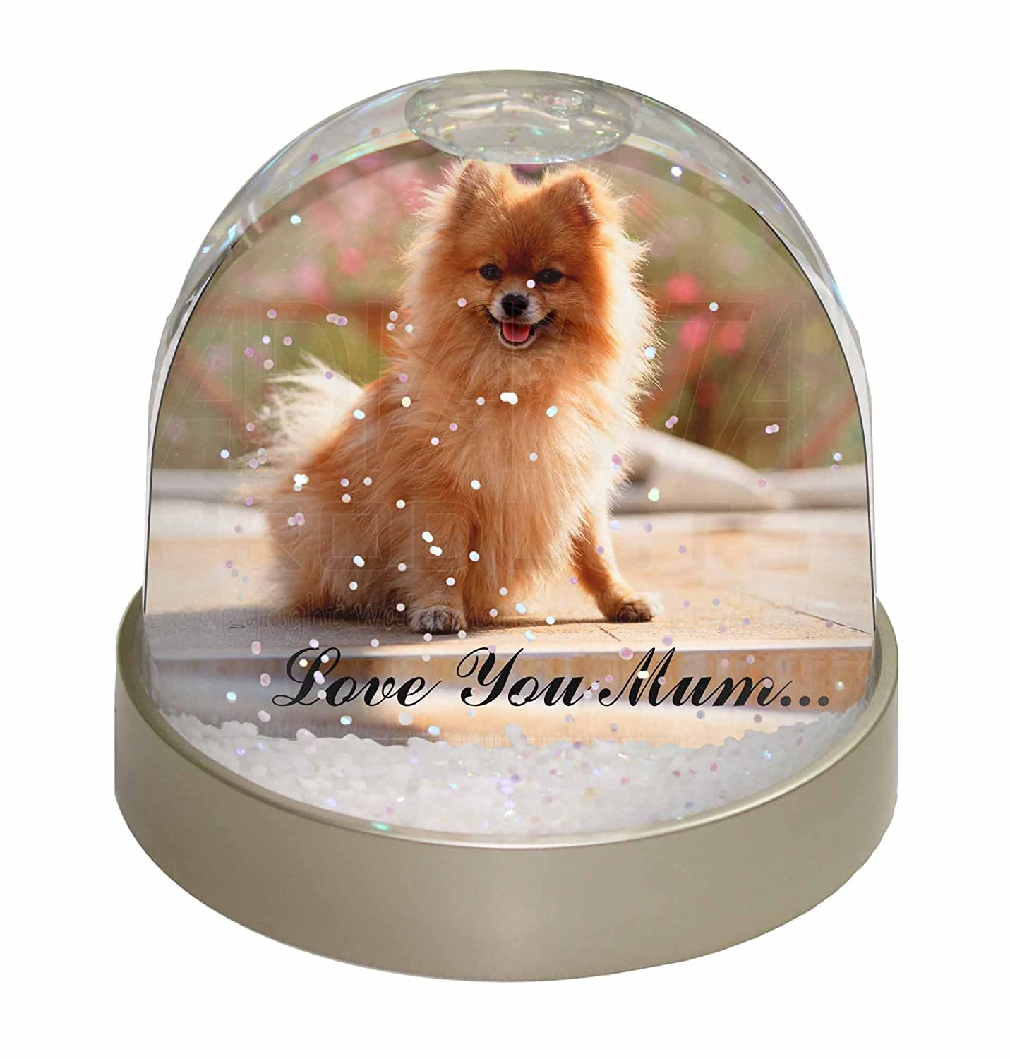 Advanta Pomeranian Dog 'Love You Mum' Photo Snow Globe Waterball Stocking Filler Gift, Multi-Colour, 9.2 x 9.2 x 8 cm Advanta Products AD-PO89lymGL