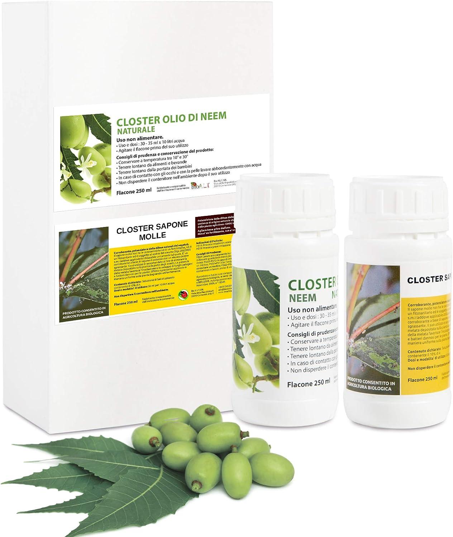 CLOSTER Set Jabón Potasico y Aceite de Neem para Plantas 2x250ML - Insecticida Natural Mosquitos Chinches Pulgones Cochinilla Piojos Desinfestante Biodegradable Efectivo Ecológico (2x250ML Puro)