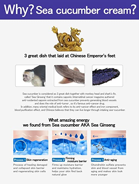 Chondroitin sulfate from sea cucumber