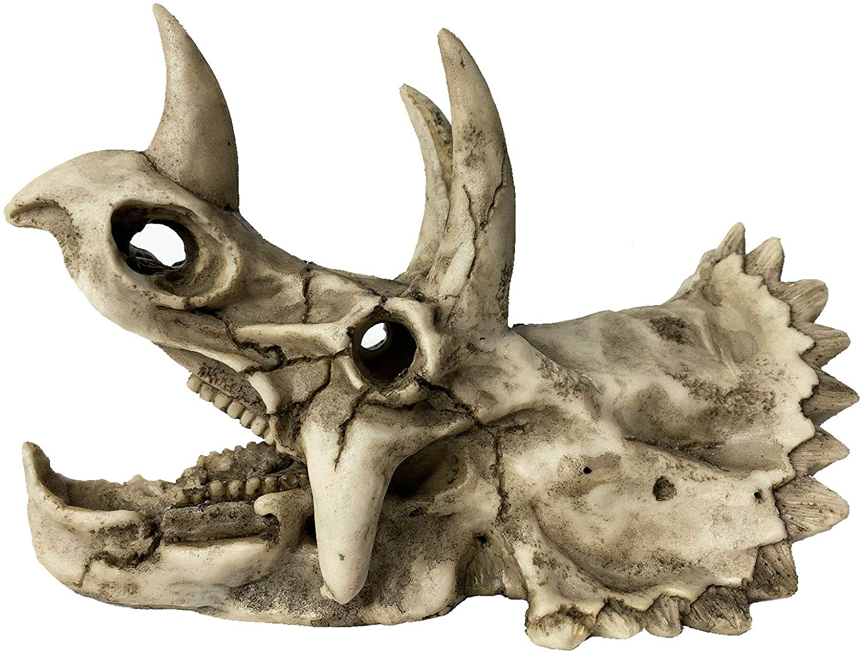 kathson Resin Dinosaur Triceratops Skull Décor Aquarium Decoration Reptiles Hideout Fish Tank Landscape Ornament Home Decor