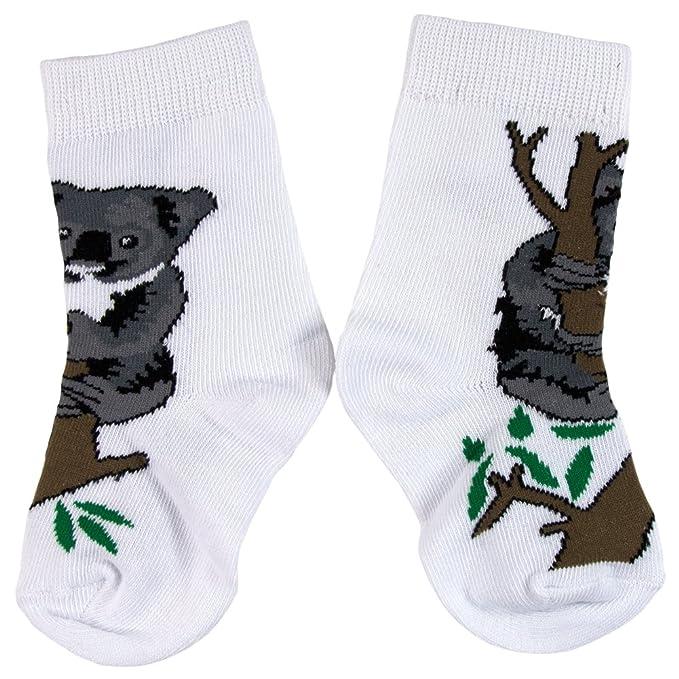 Mundo animal - Koala en árbol Juvy calcetines Blanco Blanco blanco: Amazon.es: Ropa y accesorios