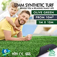 OTANIC Artificial Grass 1 Roll 1x10m Synthetic Turf Yarn Lawn 17mm Pile Height Plant Oliver Green Colour