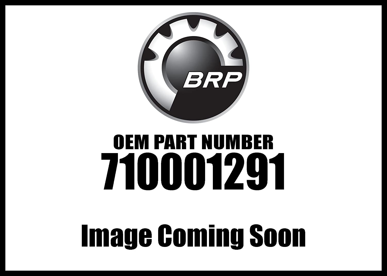 Spyder 2008-2010 Spyder Gs Roadster With Sm5 Transmission License Light Assembly 710001291 New Oem