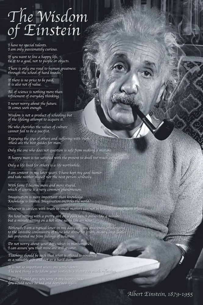 アルバートアインシュタインポスターThe Wisdom of Einstein withアクセサリーアイテム61 x 91.5 CMサイズマルチカラーby Empire Merchandising GmbH B00C4ZFVH6