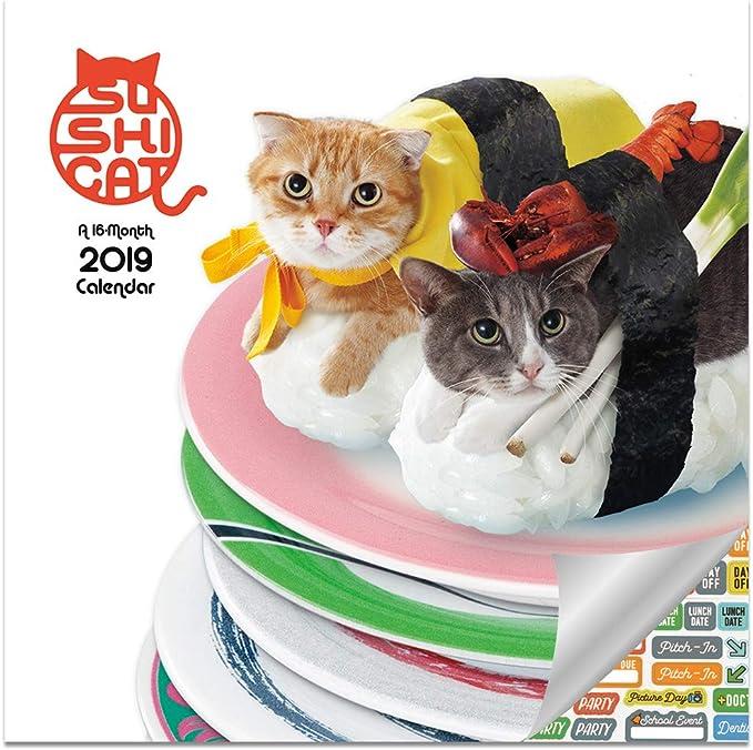Sushi - Calendario 2019 para gatos – Deluxe 2019 Sushi Cat Calendario de pared con más de 100 pegatinas de calendario (regalos de gato de sushi, suministros de oficina): Amazon.es: Oficina y papelería