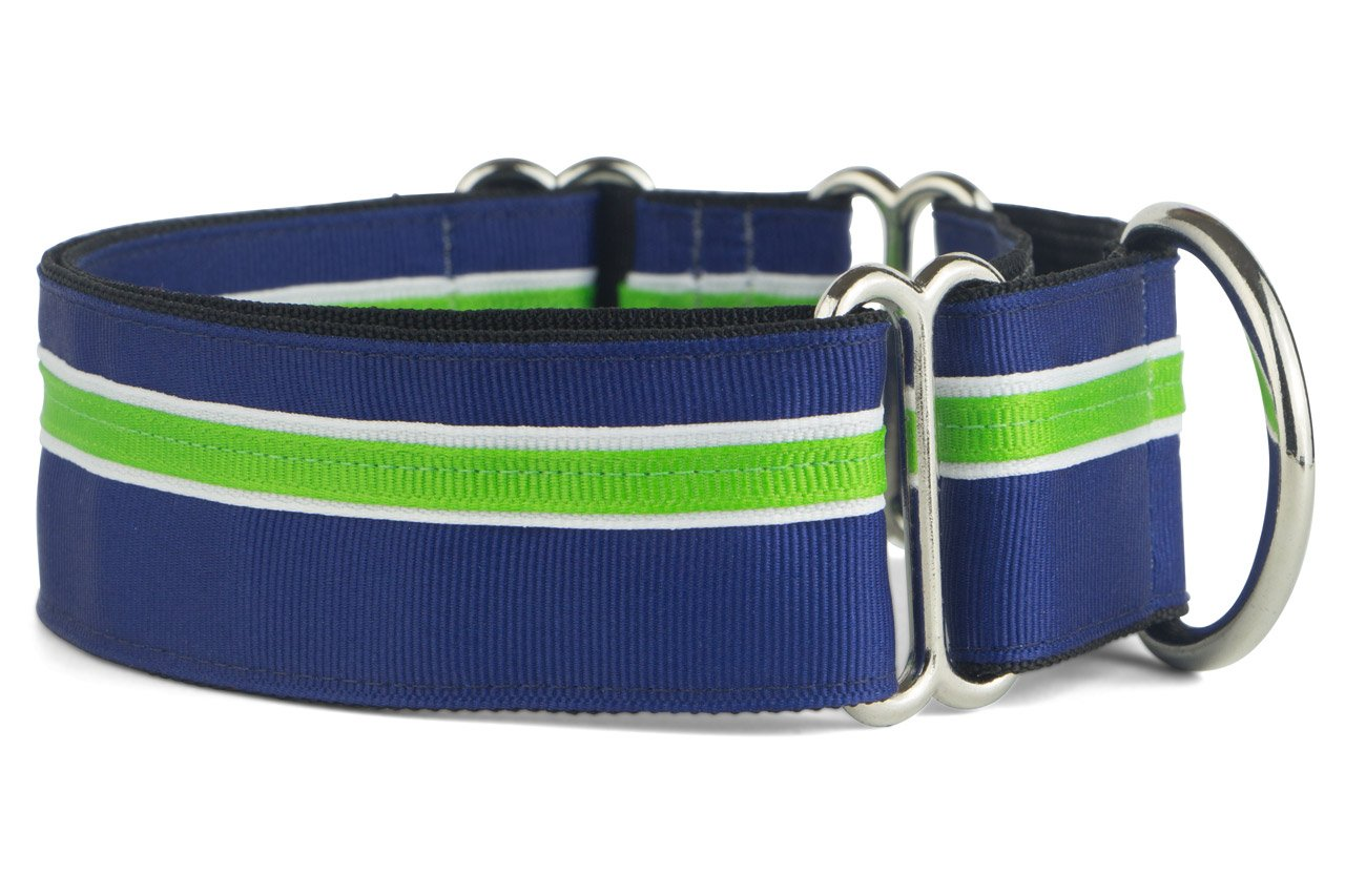 If It Barks - 1.5'' Martingale Collar for Dogs - Adjustable - Nylon - Strong and Comfy - Ideal for Training - Made in USA - Medium Finley