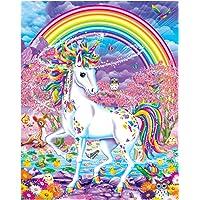 "Kits de pintura al óleo pintados a mano por adultos Pintura DIY por números-Unicornio de arco iris 16""x20"" (Sin marco)"