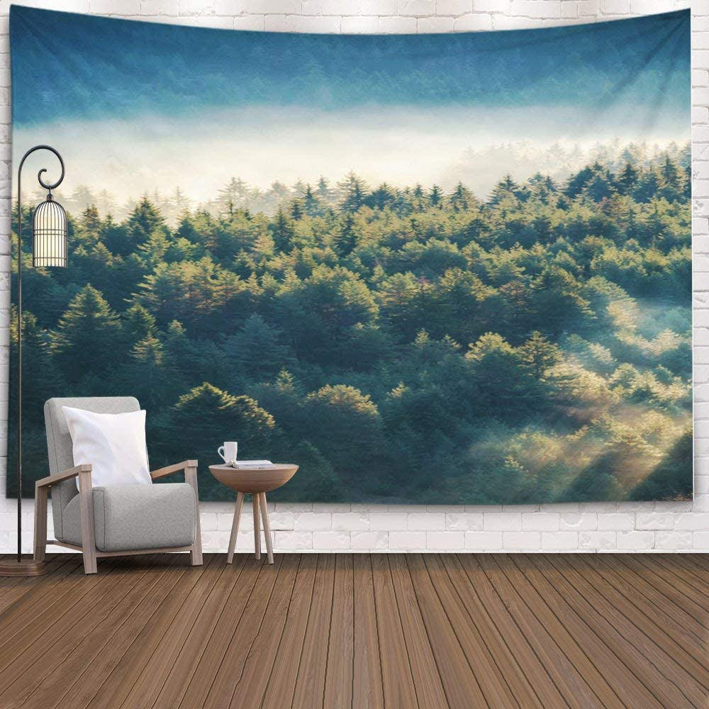 EMMTEEY Mountains Tapestry,Tapestries Décor Living Room Bedroom for Home Inhouse by Printed 80x60 Inches for Pine Forest on The Mountain Slope in a Nature Reserve