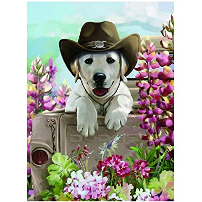 Binory Landscape Jigsaw Puzzles for Children Adults 300 Pieces, Challenge Picture Puzzle Intelligent Toy Brain Game Personalized Gift for Kids Teens and Seniors - Cowboy Dog: Toys & Games