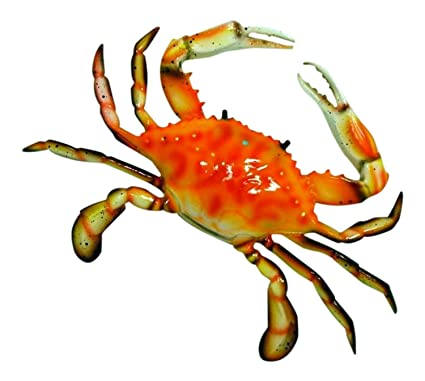 Amazon.com: Large 17 inch Replica Steamed Crab Wall Beach Decor ...