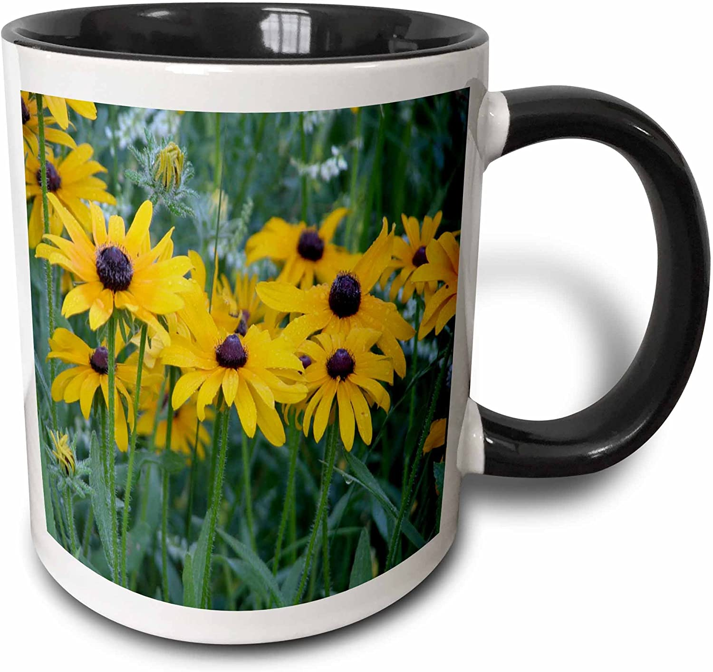 3dRose eyed Susans in the Garden Two Tone Black Mug, 11 oz, Multicolor