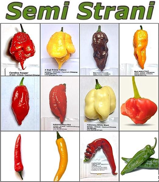 World/'s Hottest Graines Carolina Reaper Chili 10