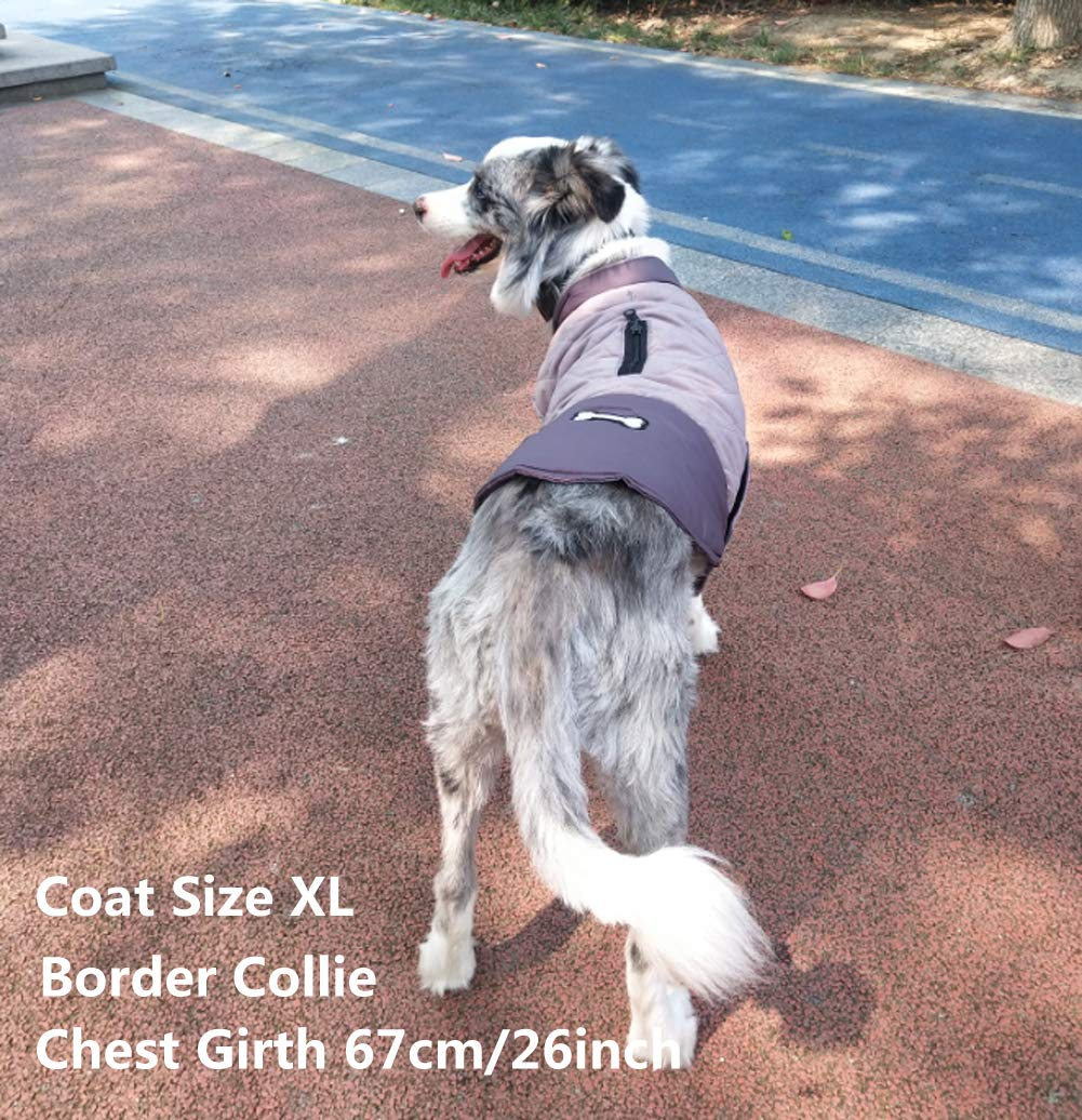 XL, Blue 5 Colors 7 Sizes for Small Medium Large Dogs Water-Resistant Windproof Snowsuit Cold Weather Pets Cloth Rantow Reflective Dog Coat Winter Vest Reversible Loft Jacket