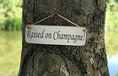 Raised on Champagne SIGN Solid Wood Home Decor kitchen Sign Plaque ...