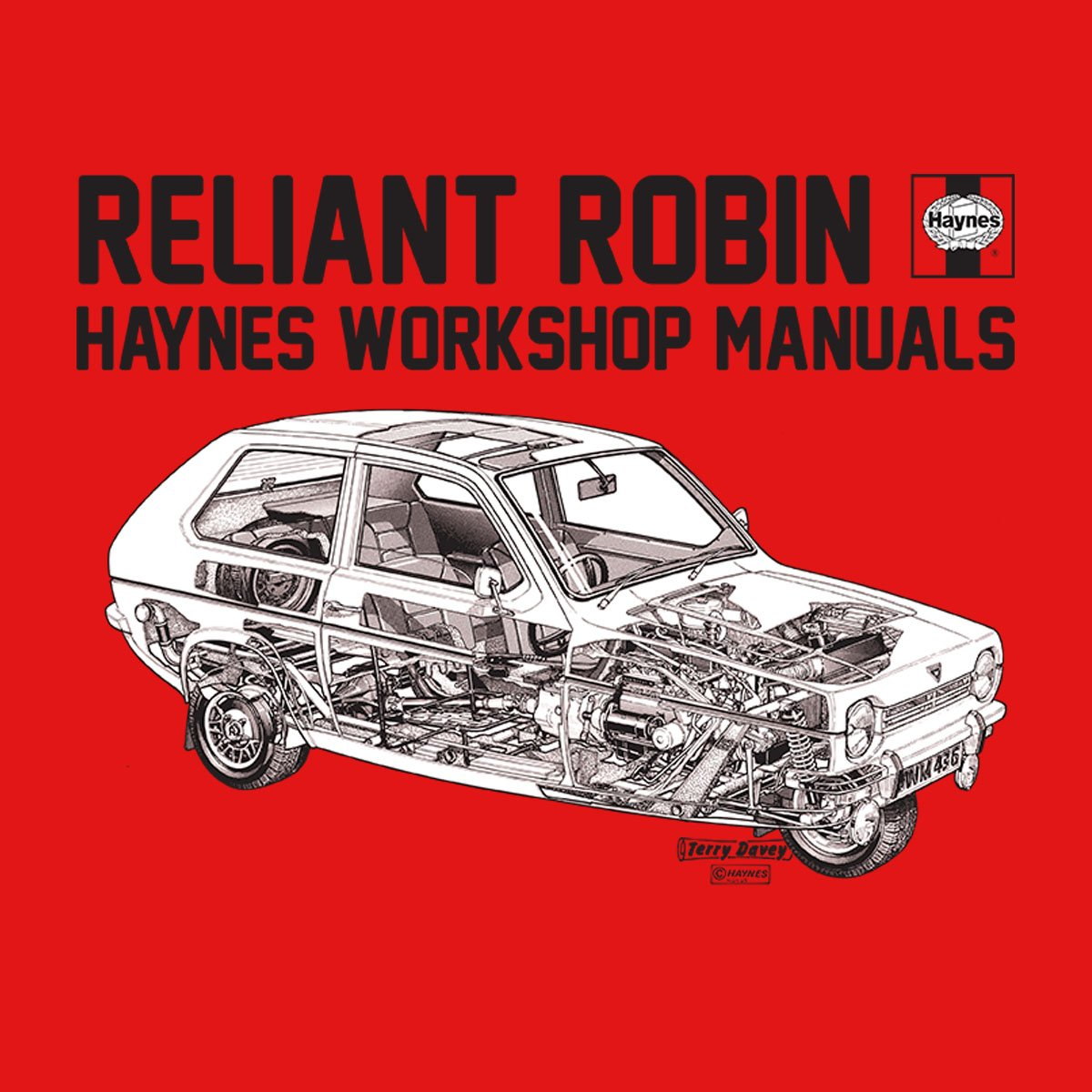 reliant robin repairs manual