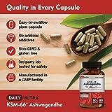 KSM-66 Ashwagandha by DailyNutra - 600mg Organic