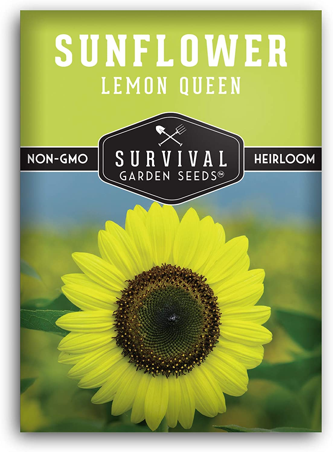 Survival Garden Seeds - Lemon Queen Sunflower Seed for Planting - Packet with Instructions to Plant and Grow in Your Home Vegetable Garden - Non-GMO Heirloom Variety