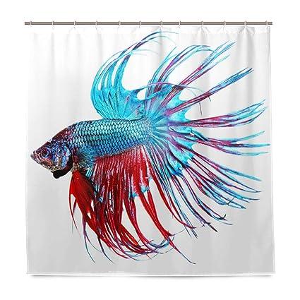 Aquarium Shower CurtainFantastic Betta Fish Close Up Dragon With Fringy Tail Tropic Aquatic