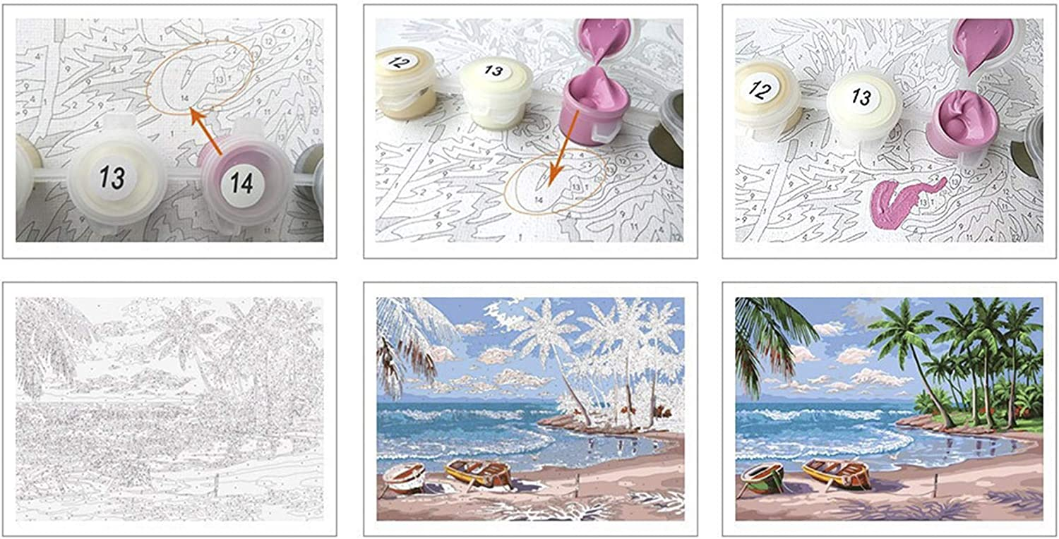 Paint by Numbers for Adults Kits Adult Toy Color Oil Paint DIY Paintings Art Set for Beginner Wall Home D/écor bsj